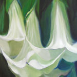 White Trumpets, 6x6, SOLD
