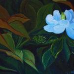 Sweet Magnolia 14x11 $375